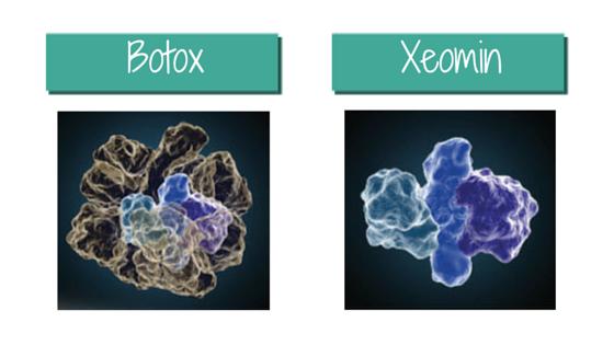 Botox vs Xeomin